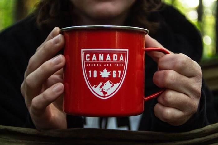 Kanada Dil Okullarında Dil Öğrenmenin Yolları ve Avantajları